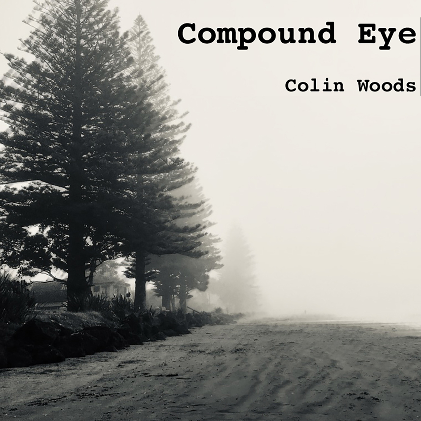 New Album 'Compound Eye' released 14 Jan 2020